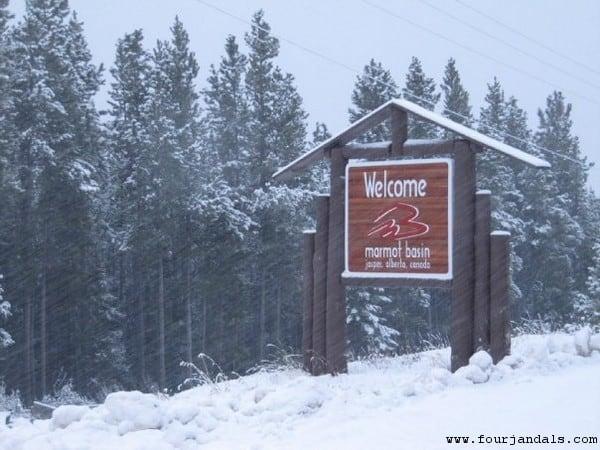 Marmot Basin Ski Area Sign