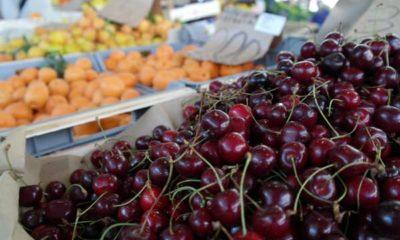 Fresh cherries in La Spezia