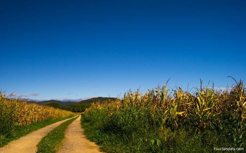 Costa Brava Rail Trail Biking