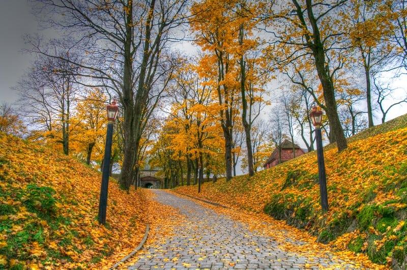 Autumn in Oslo Akershus Castle