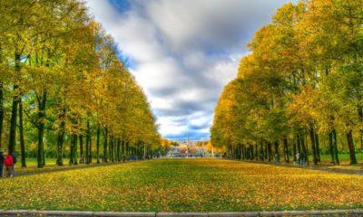 Vigeland Park Autumn Colours Oslo