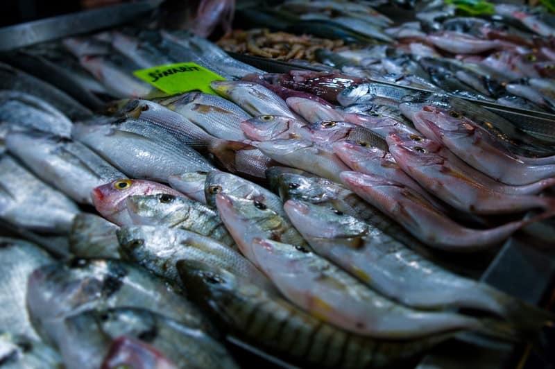 Fethiye Fish Markets