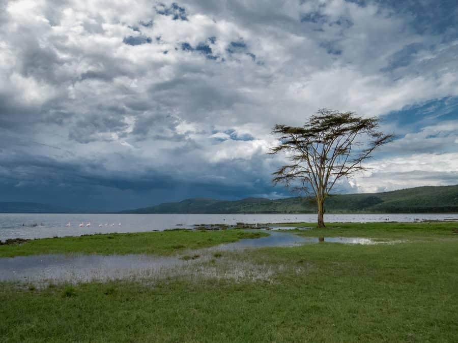 Lake Nakuru National Game Park Kenya