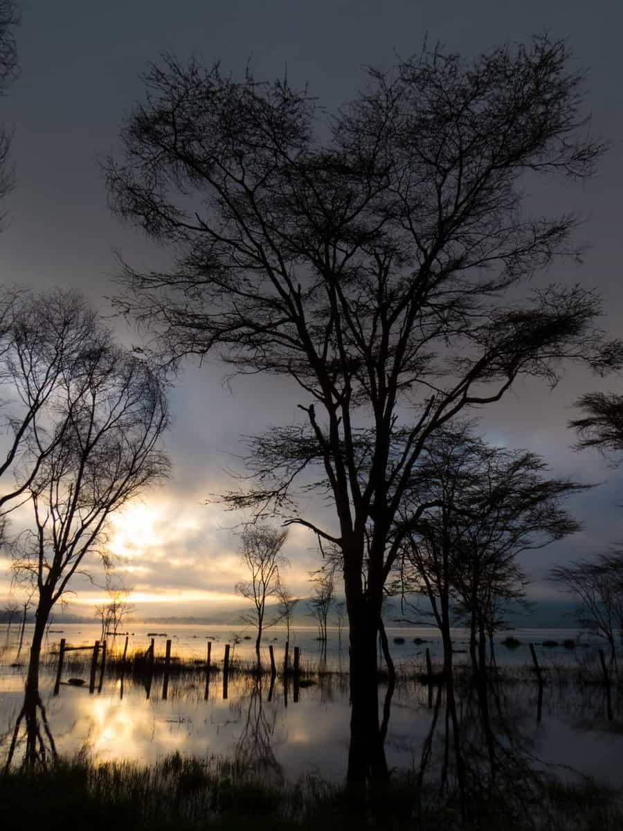 Lake Nakuru National Park Sunrise