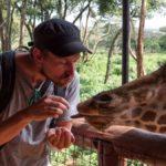 Kissing and feeding Giraffes at the Giraffe Centre in Nairobi, Kenya