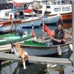 Istanbul's hidden secret – Büyükada Island in the Princes Islands