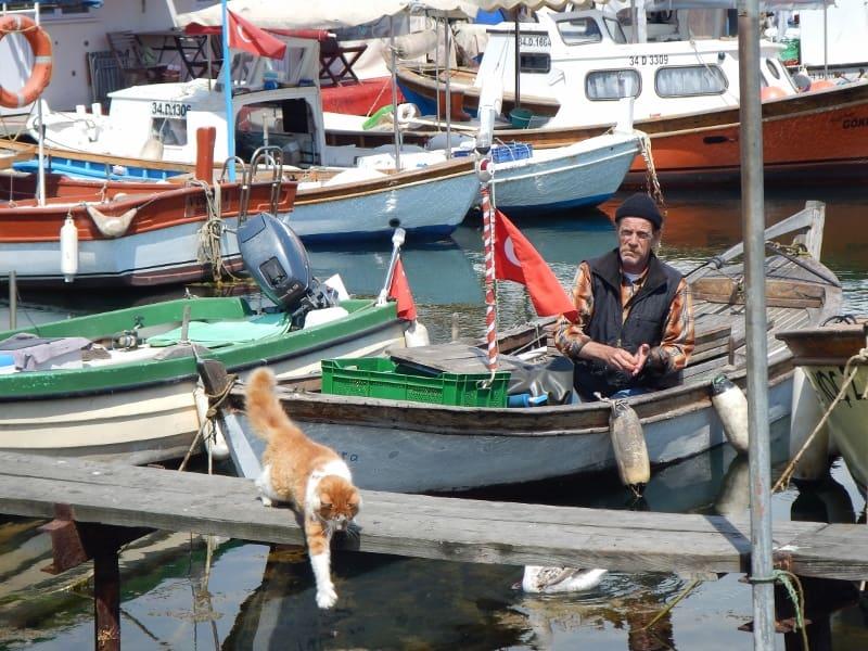 Fisherman on Büyükada Island