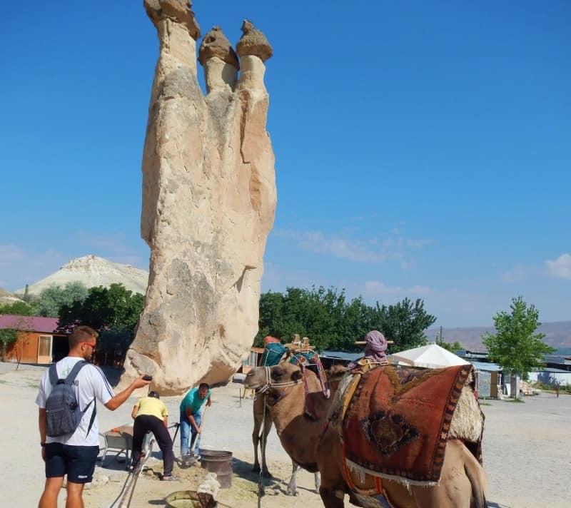 Camel in Pasabag, Cappadocia
