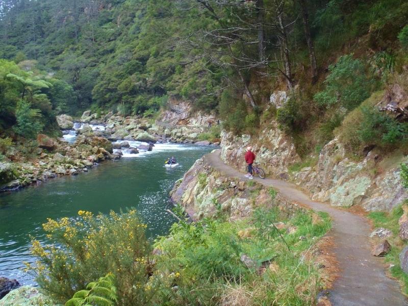 Cycling the Karangahake Gorge in the Coromandel