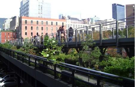 Exploring New Yorks High Line