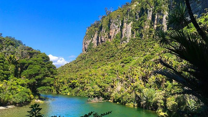 Pororari River. Image credit - New Zealand Trails